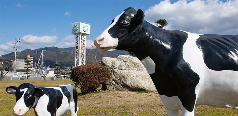 イメージ:愛媛県酪農業協同組合連合会