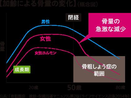 画像:加齢による骨量の変化(概念図)のグラフ