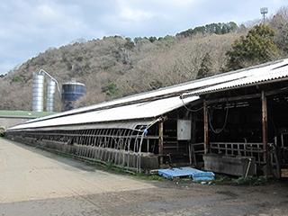 イメージ:小野田牧場(西予市)