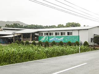 イメージ:渡辺牧場(鬼北町)
